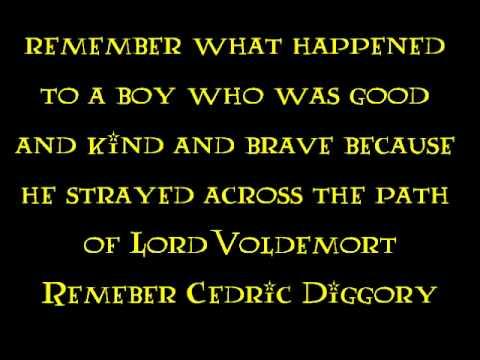 Pensieve Diggory ~ Ministry of Magic (lyrics)