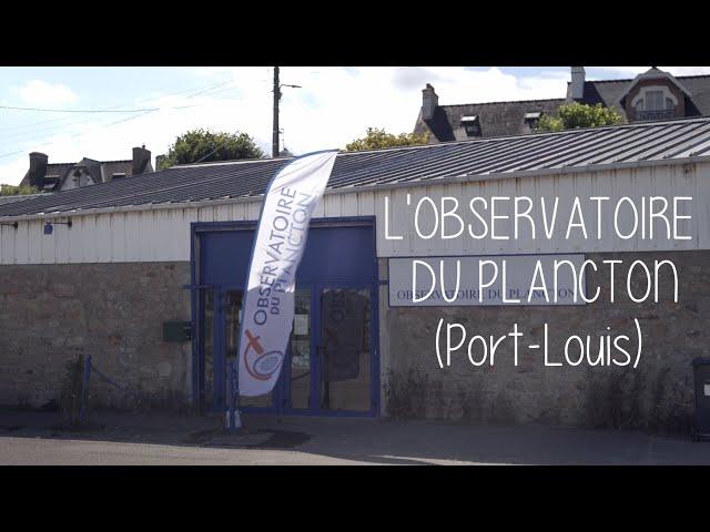 L'observatoire du plancton - Ma démarche Green Morbihan