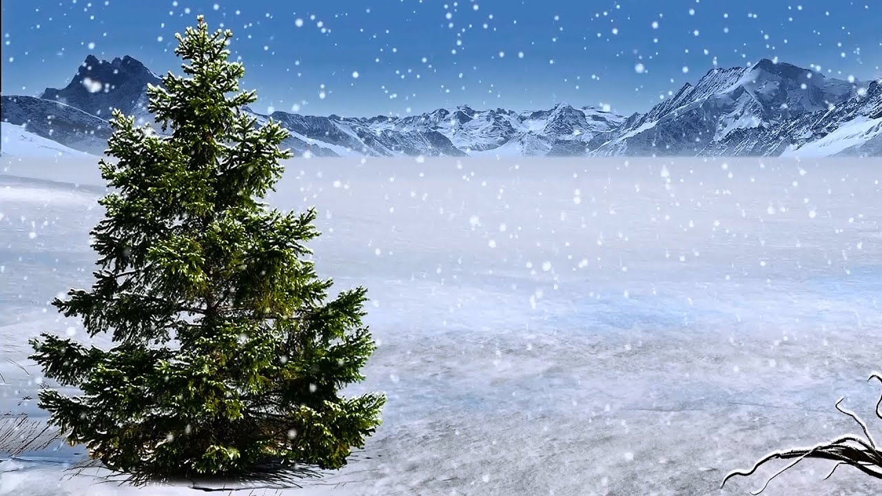 Winter Background With Snow - YouTube