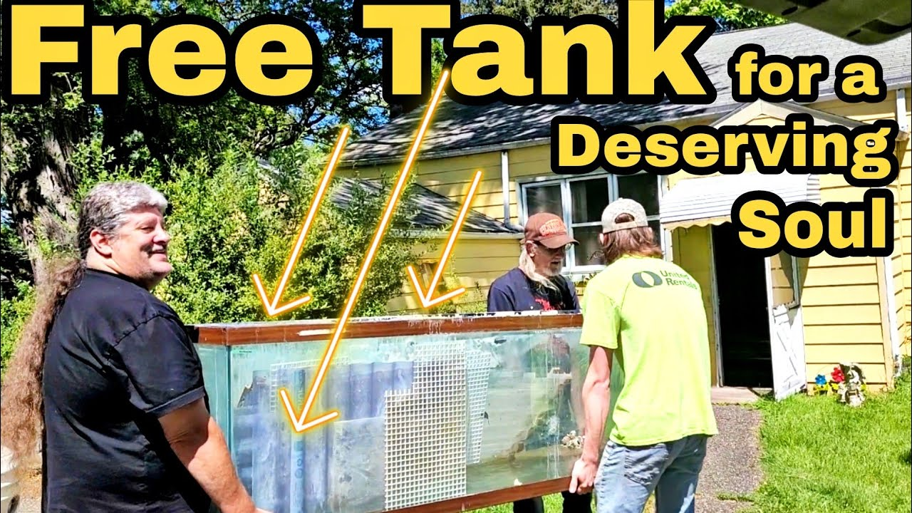 Poor soul gets a free 125 gallon tank - and we deliver it to his house. we're Ohio Fish Rescue