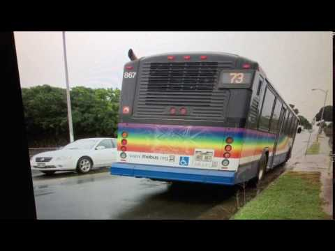 TheBus Honolulu 2003 Gillig Phantom 40' #867 Route 73 Picture