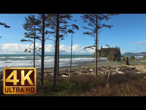 4K Winter Beach Scenery with Relaxing Nature Sounds | Ruby Beach in Winter/Trailer