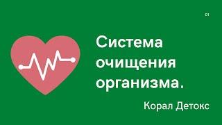 Корал Детокс стартовая программа для восстановления здоровья Ольга и Владимир Подхомутниковы