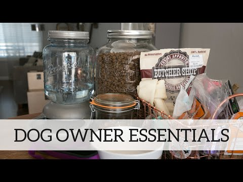 First Time Dog Owner Essentials