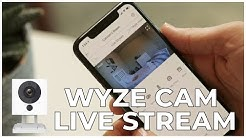 3 - MAKING THE MOST OF WYZE CAM LIVE STREAM