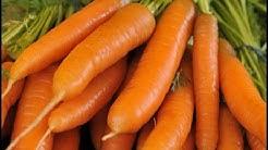 Karottensuppe gegen Durchfall