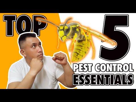 top-5-pest-control-essentials