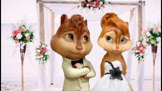 Невеста Элвин и Бурундуки