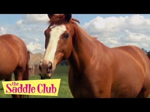 The Saddle Club Movie - Adventures at Pine Hollow | HD Full Movie