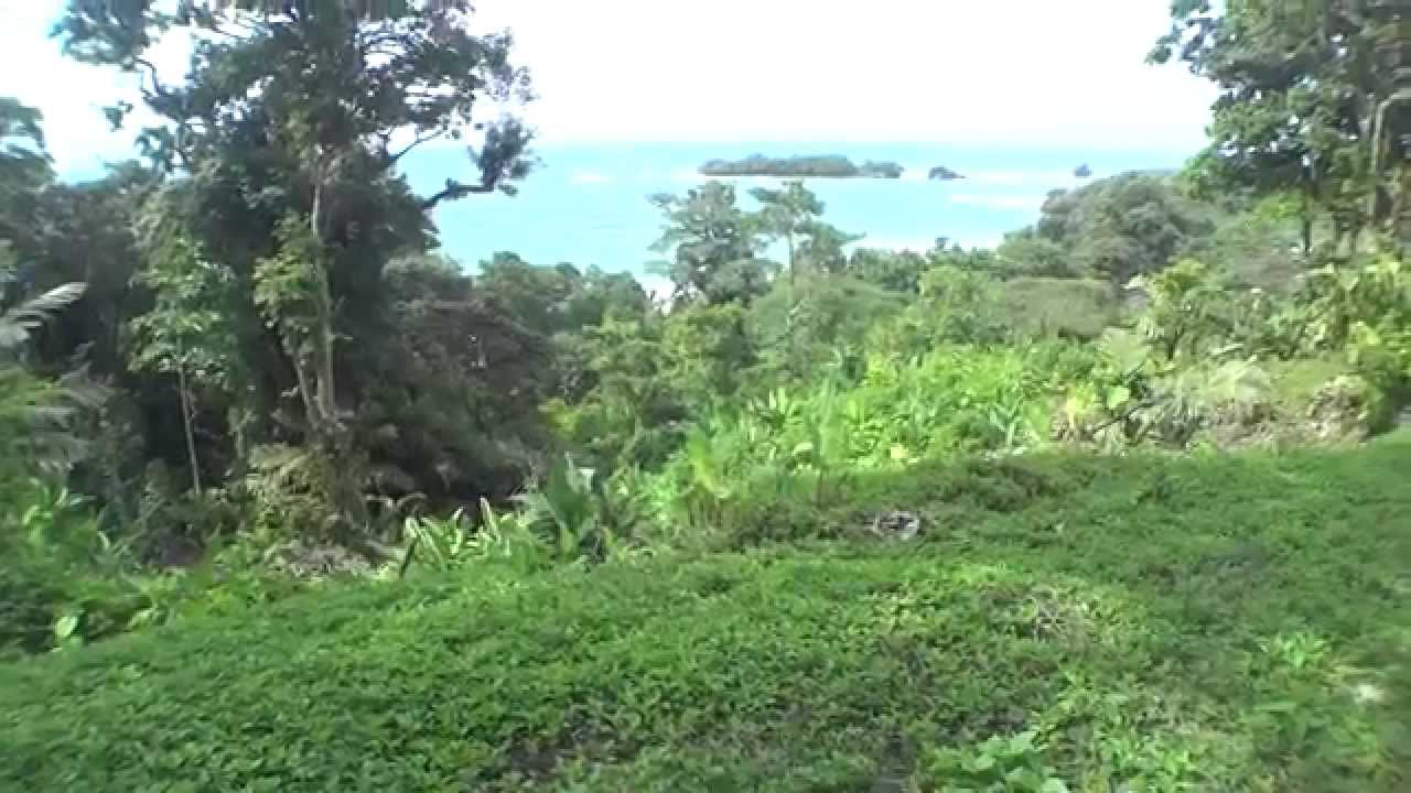 Red Frog Beach Island Resort Certified For Its: Red Frog Beach Villas For Sale #8