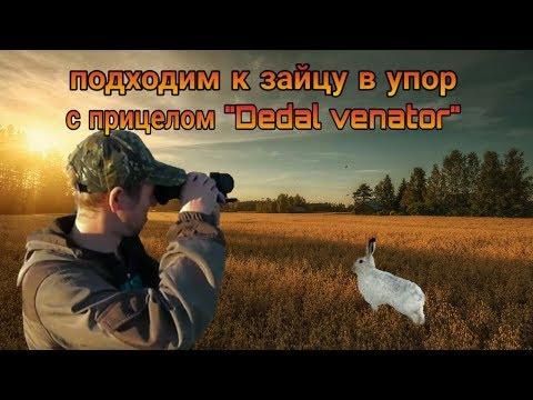 """Подходим к зайцу в упор с прицелом """"Dedal Venator""""."""