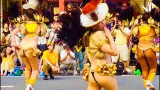 2018 第37回浅草サンバカーニバル優勝チーム G.R.E.S.仲見世バルバロス ASAKUSA Samba Carnival