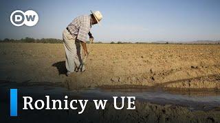 Rolnicy w UE. Zmiany w systemie dotacji
