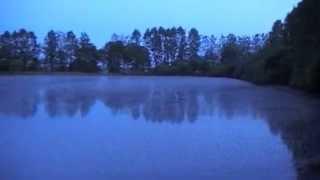 Массовая гібель рыбы в Сенненском районе Витебской области