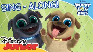 Puppy Dog Pals 🐶  | ♫ Theme Song Sing-Along ♫ | Official Disney Channel Africa