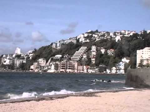 Go The Distance - Study Abroad In Wellington, New Zealand