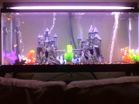 (Use As) Live Wallpaper (no sound) Relaxing Aquarium Castle Theme - 3 hours long