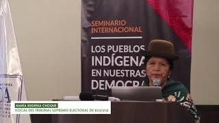 Grupo de trabajo: Fortalecimiento de la participación política indígena
