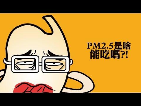 【PM2.5是啥,能吃嗎?】