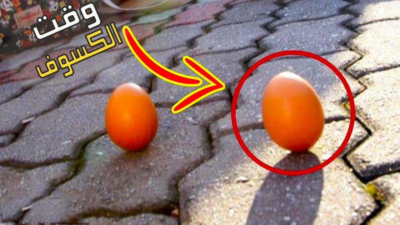 لماذا يقف البيض منتصباً عند كسوف الشمس … سبحان الله
