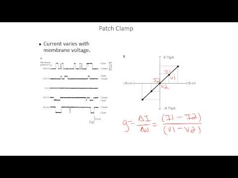 Calculating conductance/resistance from patch/current clamp data