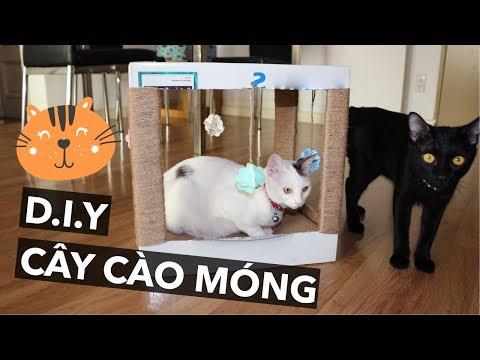 Tự làm đồ chơi cào móng cho mèo