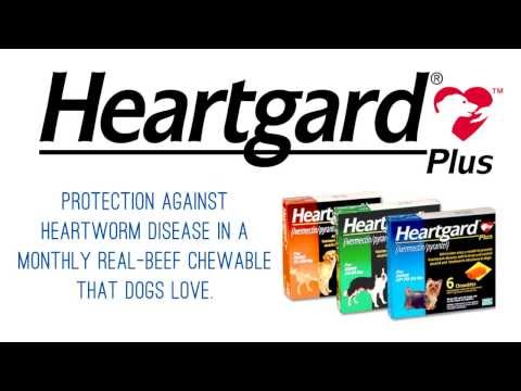Heartgard Plus Heartworm Preventative For Dogs And Cats