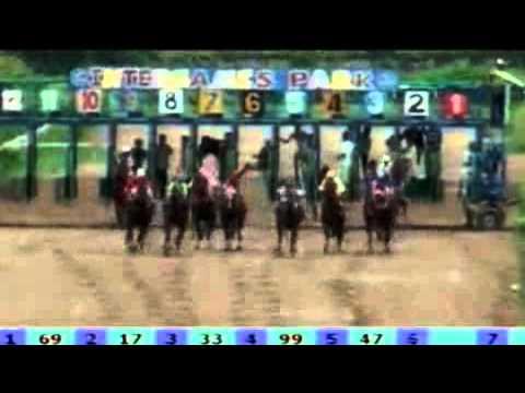 ม้าแข่งอุดรเที่ยวที่2 ชั้น9  26 พ.ค.55