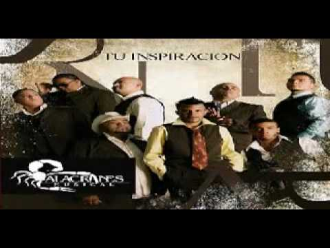 Alacranes Musical Tu inspiracion-Soy Yo.flv