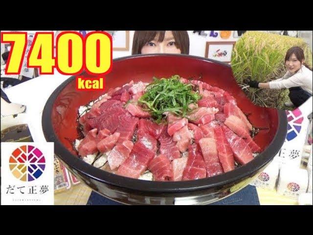 【MUKBANG】 Luxurious Tuna Rice Bowl & Rice Ball + 1Kg Miso soup [Harvesting In Miyagi] 5Kg[7400kcal]