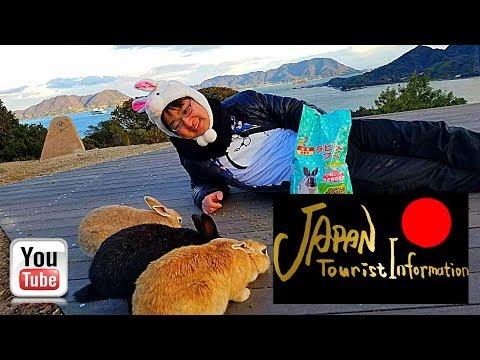 【Japan tourist information】Rabbit Island Okunoshima Hiroshima in Japan