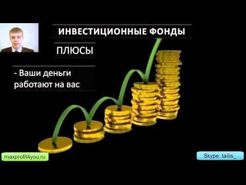 Обучение современного инвестора Урок 2.  Хайпы и инвестиционные фонды