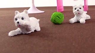 видео Развивающие игрушки и хобби для девочек