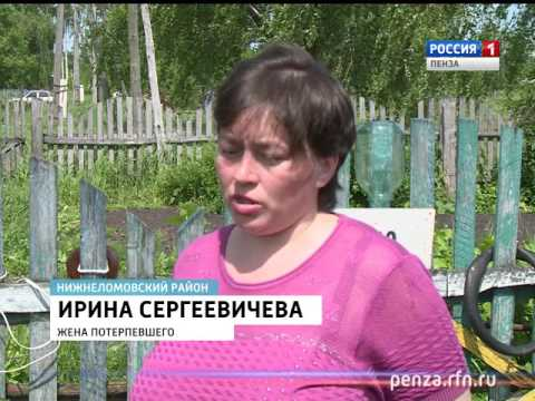 Волна неоправданной жестокости докатилась до Пензенской области