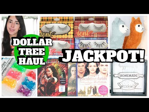 MUST WATCH DOLLAR TREE HAUL NOVEMBER 2019 NEW FINDS