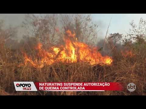 O Povo na TV: Naturatins suspende queima controlada no estado