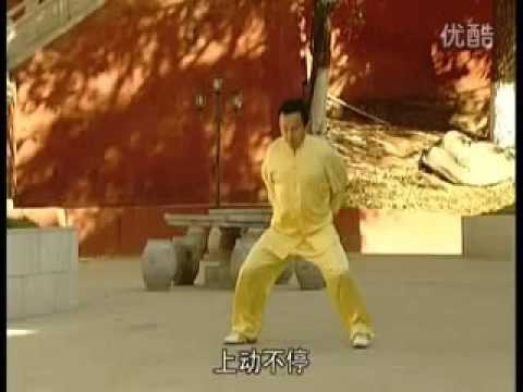 沙式通背拳—葡萄满架六路通背总手 (沙俊杰)Sha Shi Tong Bei Quan   Putao Man Jia Liulu Tong bei Zong Shou Sha Junjie