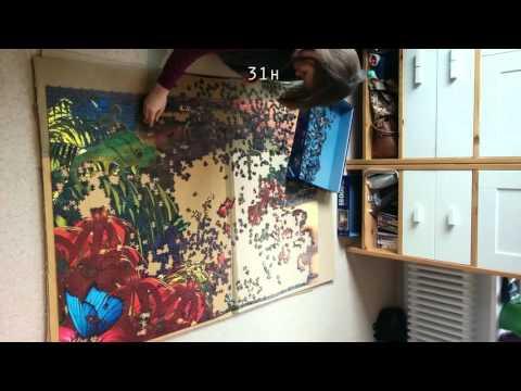 4,500 Piece Jigsaw Puzzle Timelapse