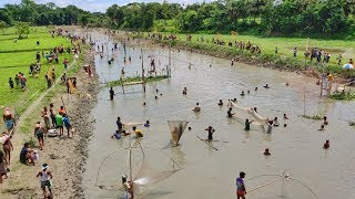 Awesome Traditional Fishing | Thousands of People Catching Fish Together From River