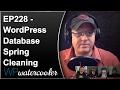 WordPress Database Spring Cleaning - WPwatercooler