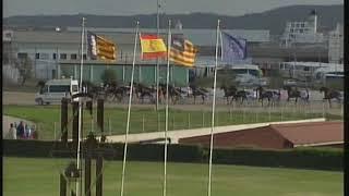 Vidéo de la course PMU PREMI APOLO Y.C.
