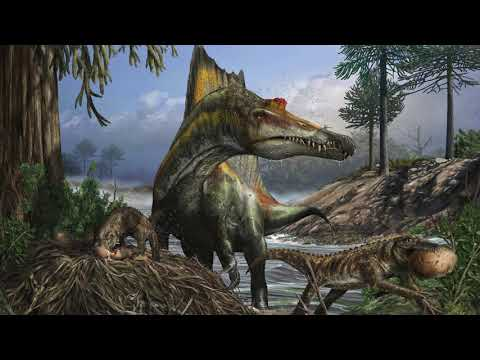 Nizar Ibrahim, Ph.D. – Paleontology, Discovering Large Dinosaur Bones in Africa