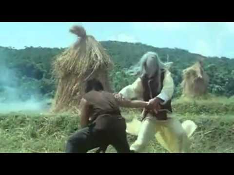King Of Kung Fu Presents - Hwang Jang Lee - Tribute