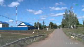 Бешенная курица Татарстан Мамадышский район село Нижний Таканыш(, 2014-09-07T06:26:16.000Z)