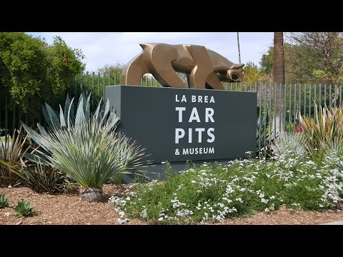 La Brea Tar Pits Museum Tour & Fossils 2016 (HD)