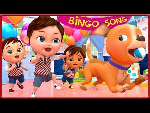 bingo-school-dog-song-,-baby-shark-,-wheels-on-the-bus-,-happy-birthday-song---banana-cartoon-[hd]