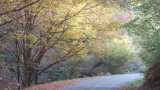 Neil Diamond ~ Glory Road ~