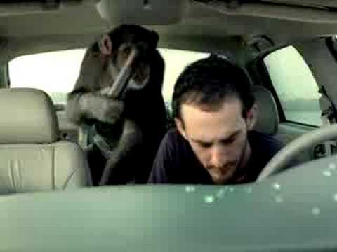 trunk monkey-car robber - YouTube