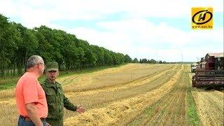 Военнослужащие помогают аграриям в уборке урожая