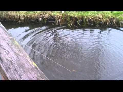 Sony Ericsson Xperia active water test (EN)
